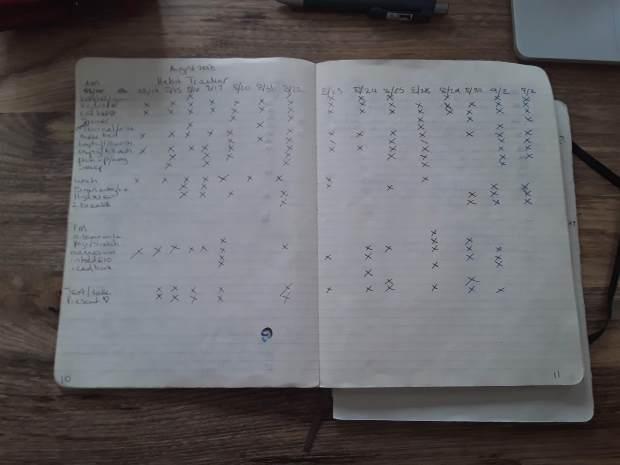 August 2018 Bullet Journal Habit Tracker